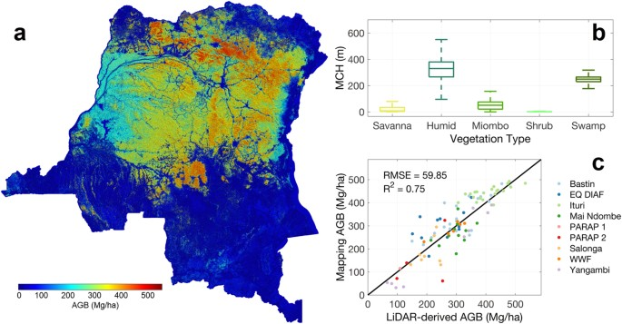 Spatial Distribution of Carbon Stored in Forests of the Democratic