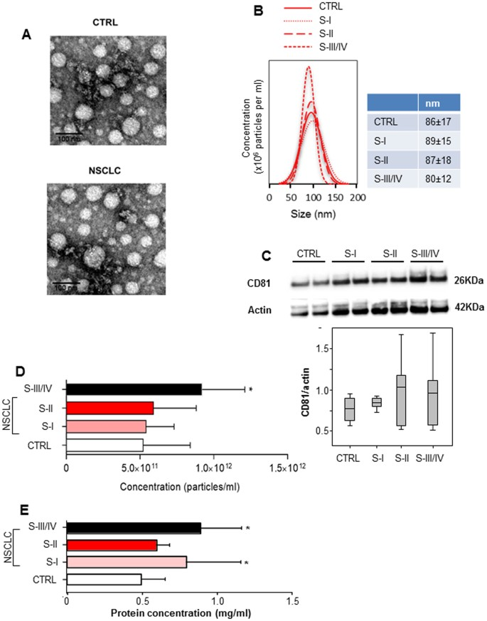 Exosomal miR-126 as a circulating biomarker in non-small-cell lung