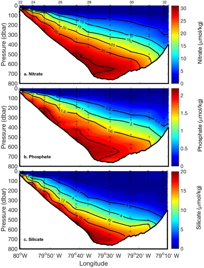 An estimate of diapycnal nutrient fluxes to the euphotic zone in the