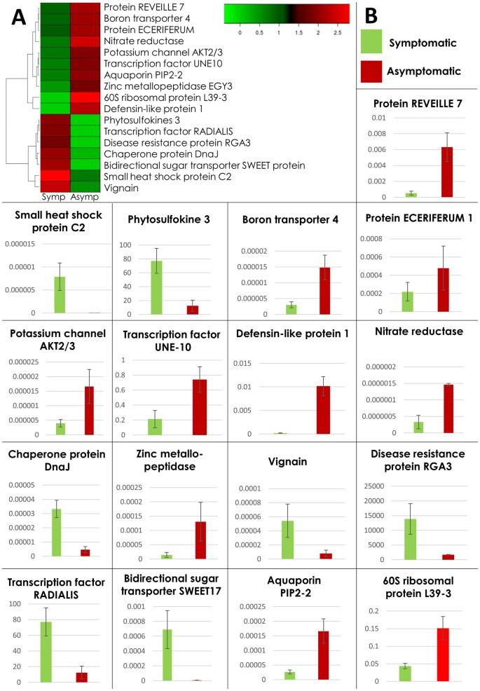 Transcriptomics reveals multiple resistance mechanisms against