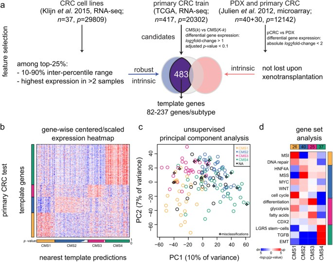 Cmscaller An R Package For Consensus Molecular Subtyping Of Colorectal Cancer Pre Clinical Models Scientific Reports