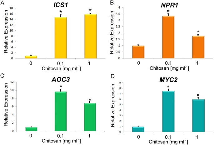 Induction of auxin biosynthesis and WOX5 repression mediate changes