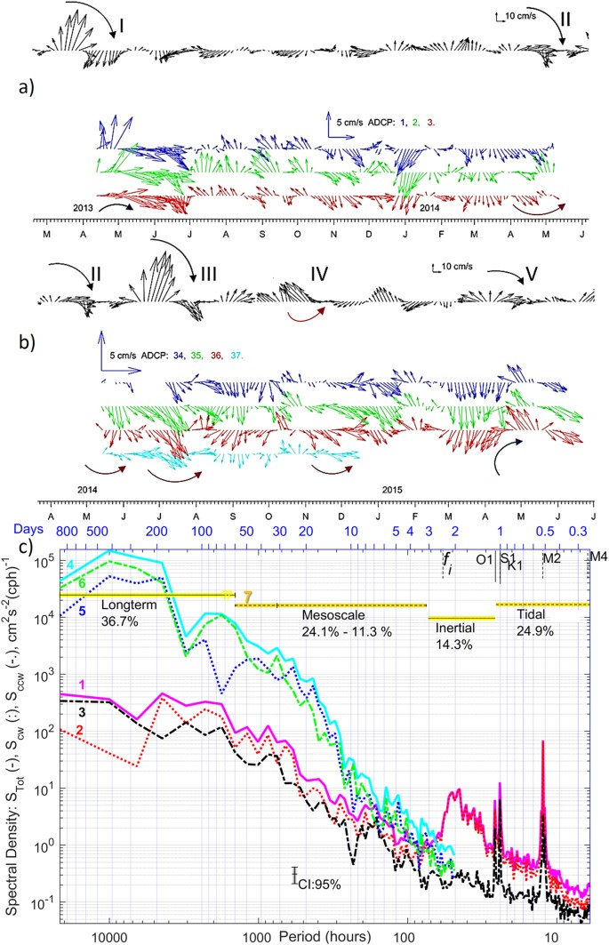 Impact of remotely generated eddies on plume dispersion at