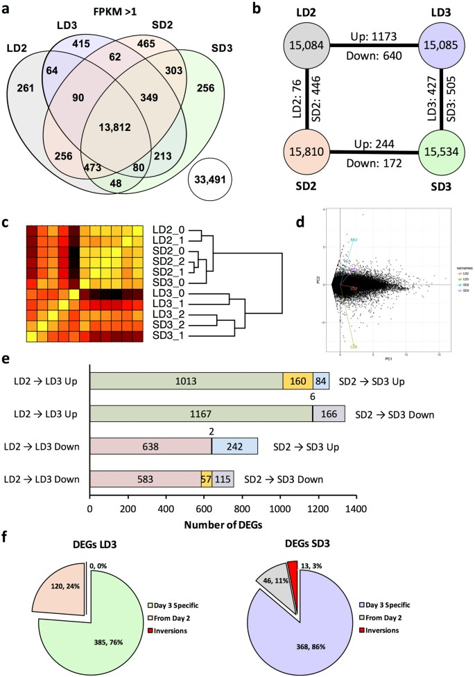 Modulation of Immune Signaling and Metabolism Highlights Host and