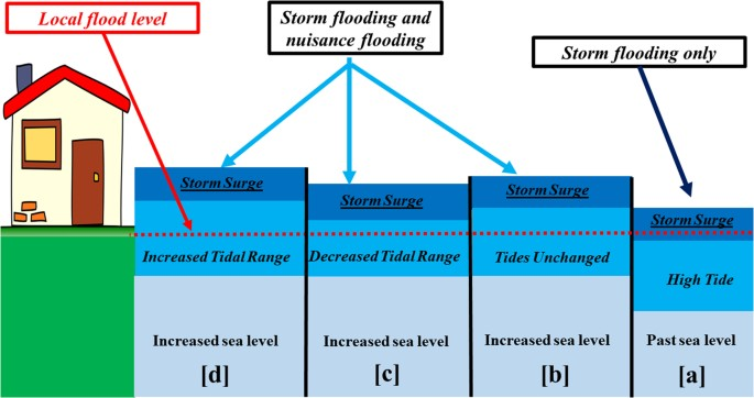 Coupling of sea level and tidal range changes, with