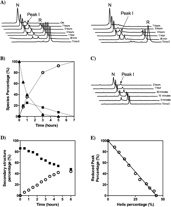 Disulfide driven folding for a conditionally disordered protein