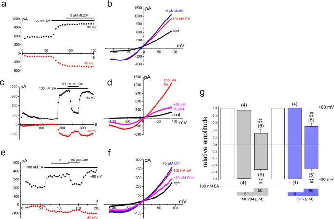Na + entry through heteromeric TRPC4/C1 channels mediates