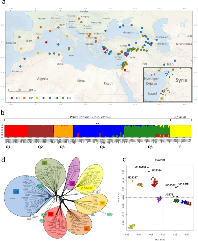 Genomic diversity and macroecology of the crop wild relatives of