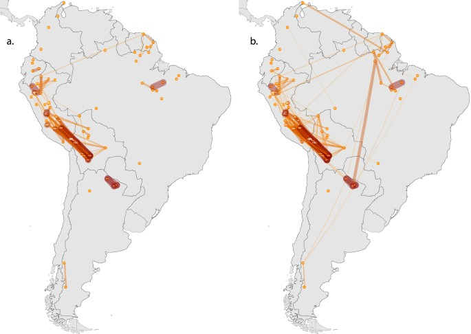 Outstanding Enclaves Of Genetic Diversity Resisted Inca Impacts On Download Free Architecture Designs Scobabritishbridgeorg