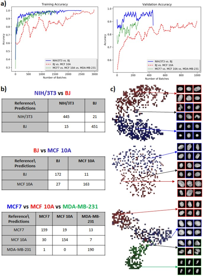 Machine Learning for Nuclear Mechano-Morphometric Biomarkers in