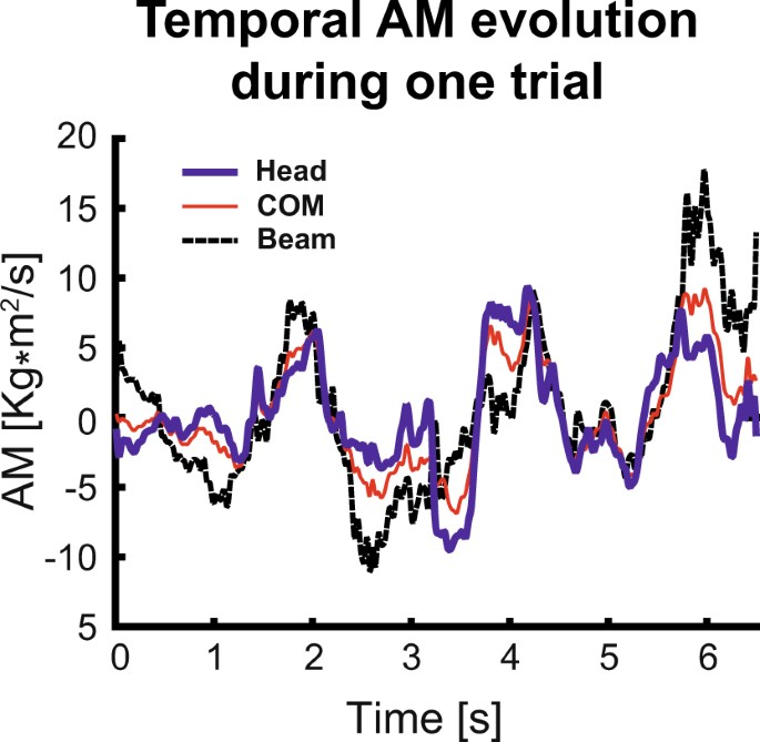 Low-dimensional organization of angular momentum during