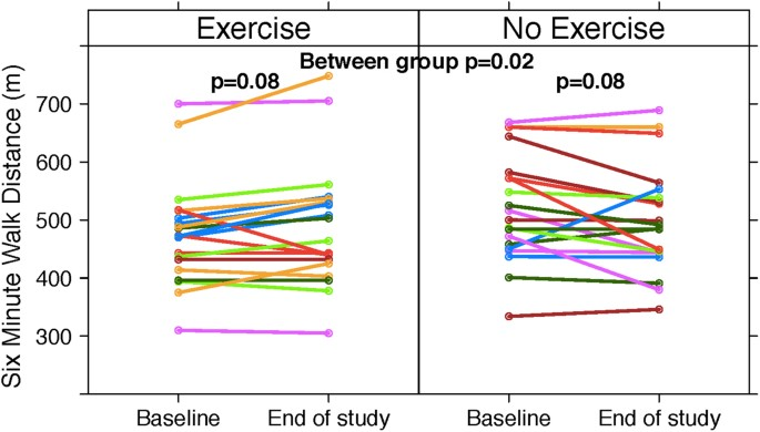 Home Exercise Training Improves Exercise Capacity in
