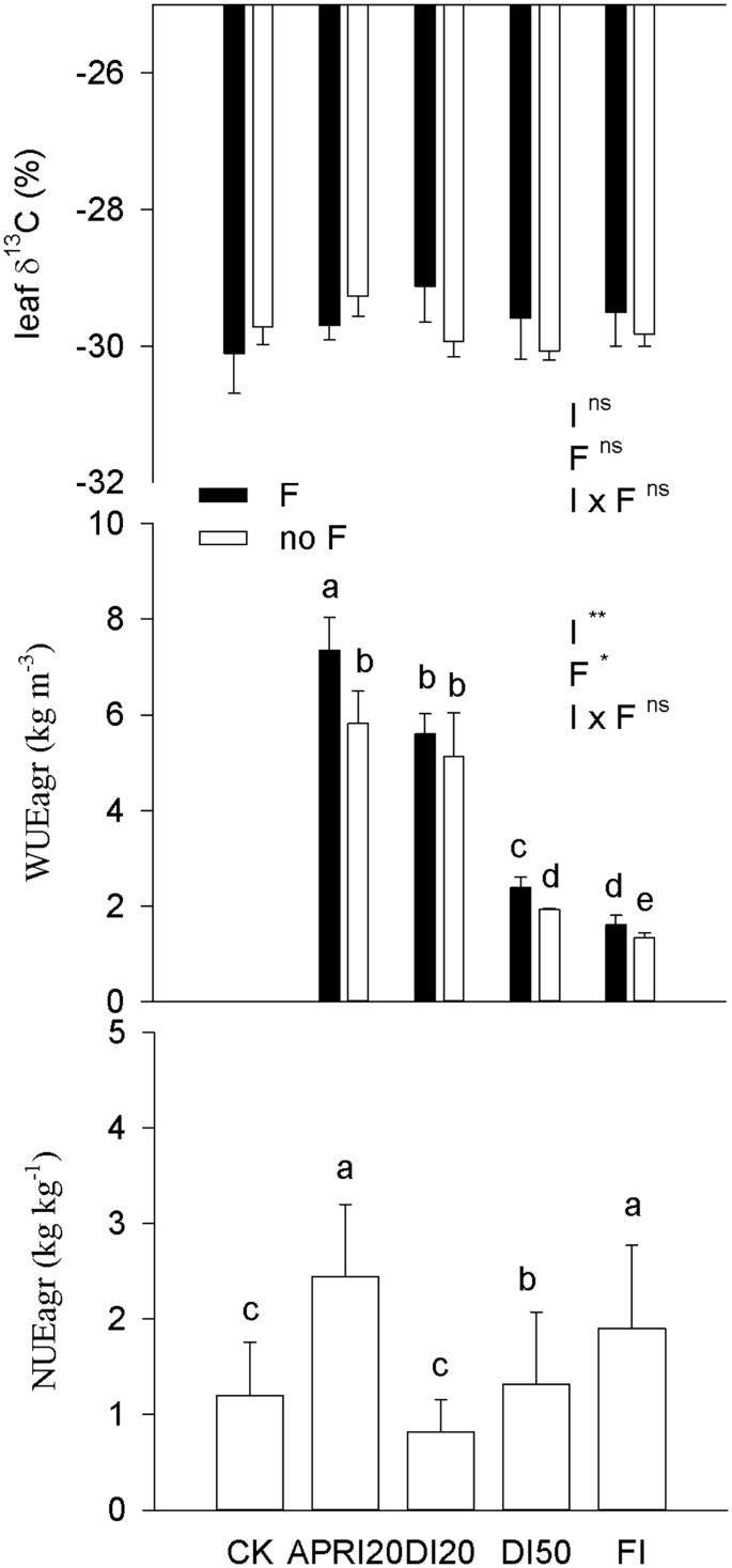 Yield and resource use efficiency of Plukenetia volubilis