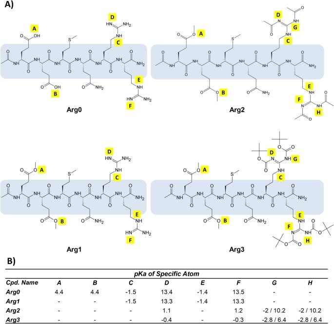 Enhanced Skin Permeation of Anti-wrinkle Peptides via Molecular