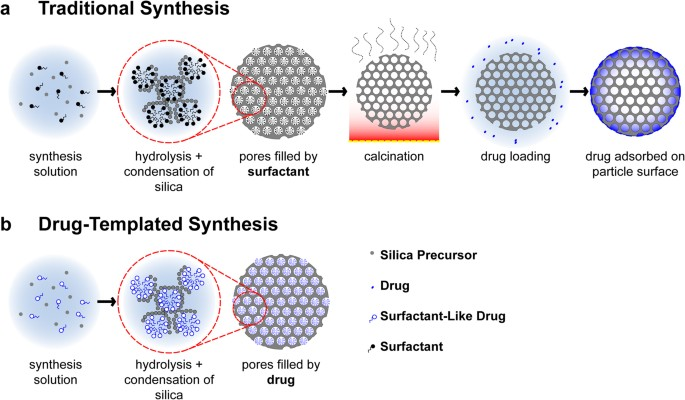 Drug Self Assembly For Synthesis Of Highly Loaded Antimicrobial Drug Silica Particles Scientific Reports
