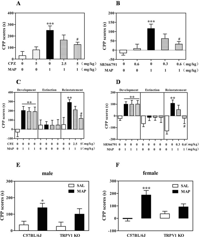 Blockade of TRPV1 Inhibits Methamphetamine-induced Rewarding Effects