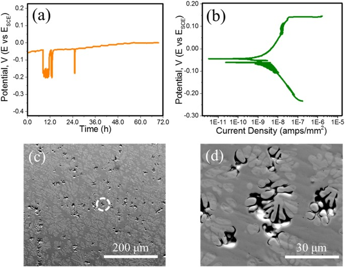 Electrochemical and Friction Characteristics of Metallic Gl ... on