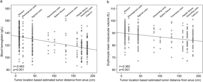 Preoperative Anemia In Colorectal Cancer Relationships With Tumor Characteristics Systemic Inflammation And Survival Scientific Reports