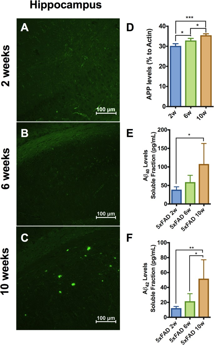 Innate immune alterations are elicited in microglial cells before