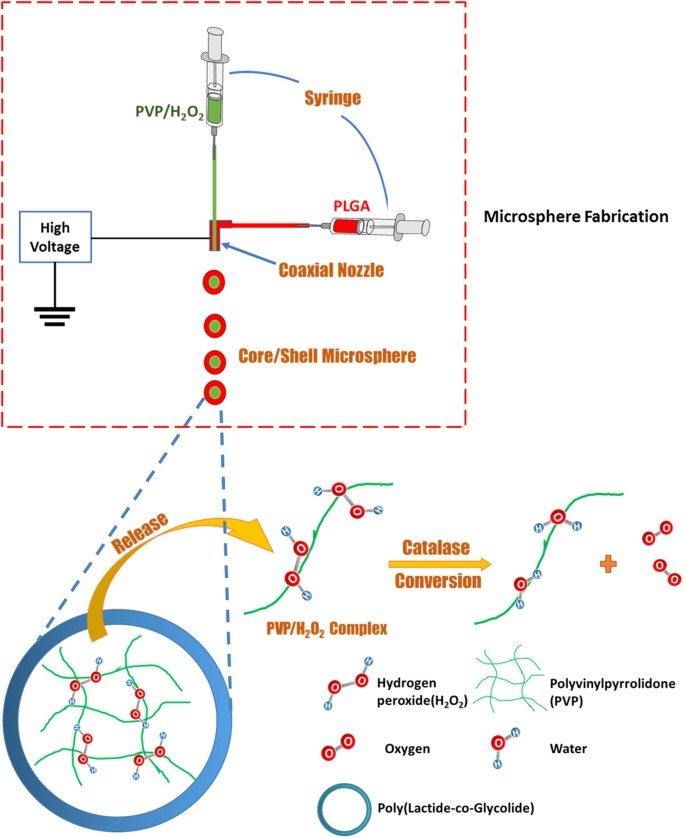 An Injectable Oxygen Release System to Augment Cell Survival