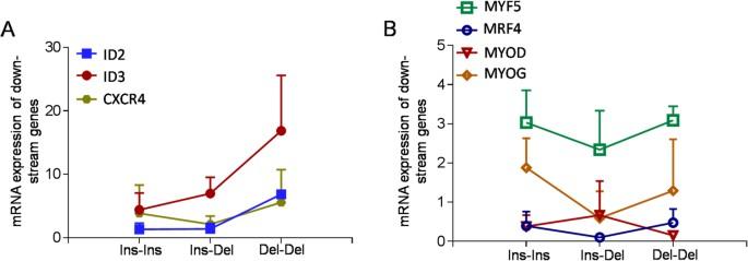 A novel PAX7 10-bp indel variant modulates promoter activity