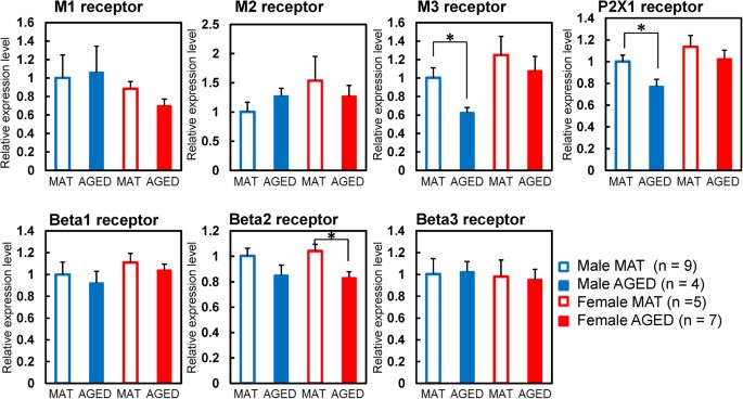 Age-related changes in function and gene expression of the male and