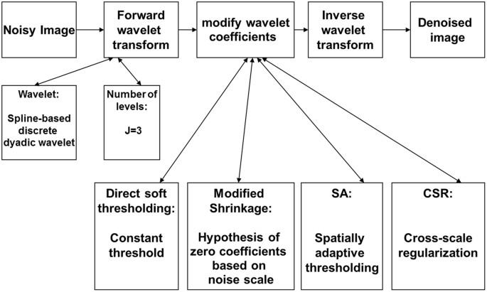Exploring an optimal wavelet-based filter for cryo-ET imaging