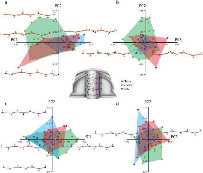 A new high-resolution 3-D quantitative method for analysing