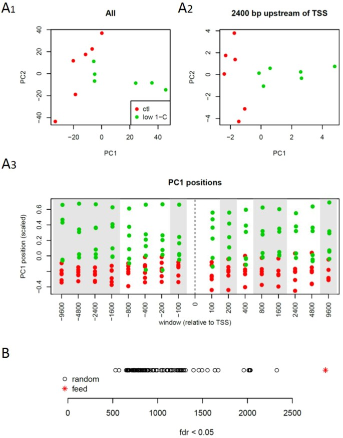 Parental micronutrient deficiency distorts liver DNA methylation and