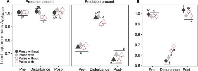 Interactions between predation and disturbances shape prey
