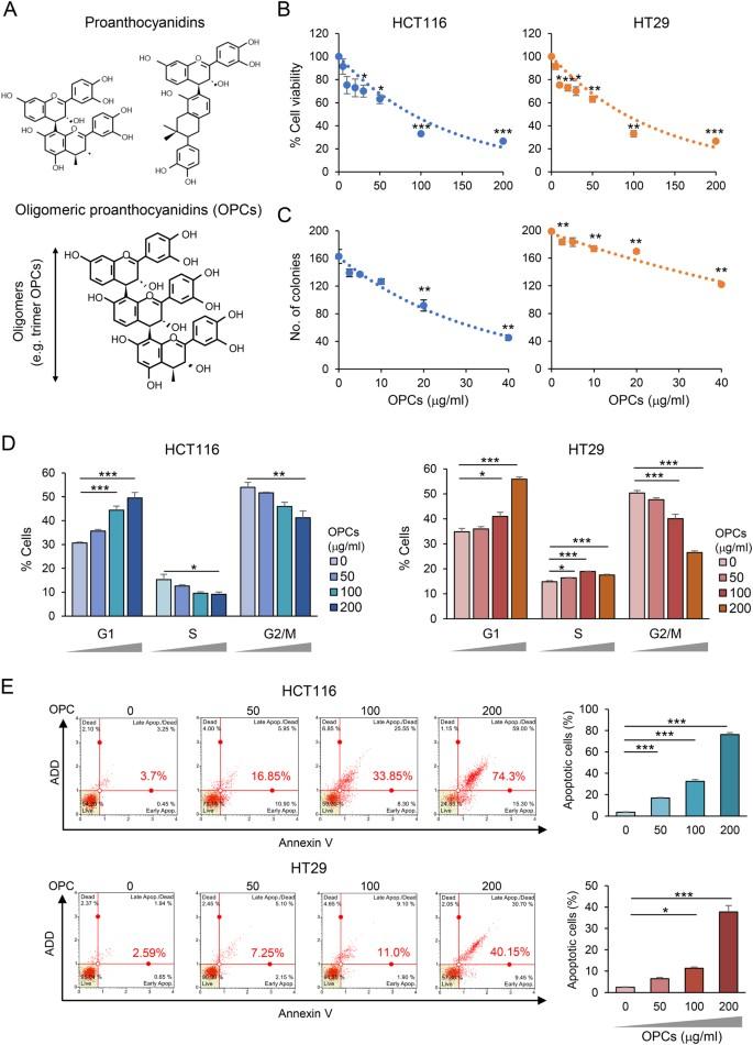 Oligomeric proanthocyanidins (OPCs) target cancer stem-like