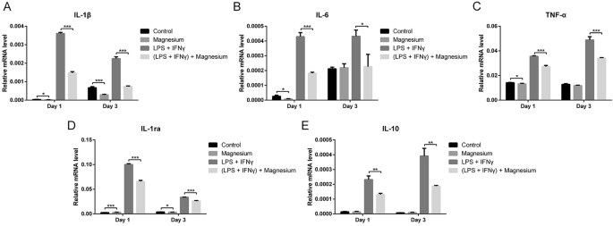 Magnesium enhances the chondrogenic differentiation of mesenchymal