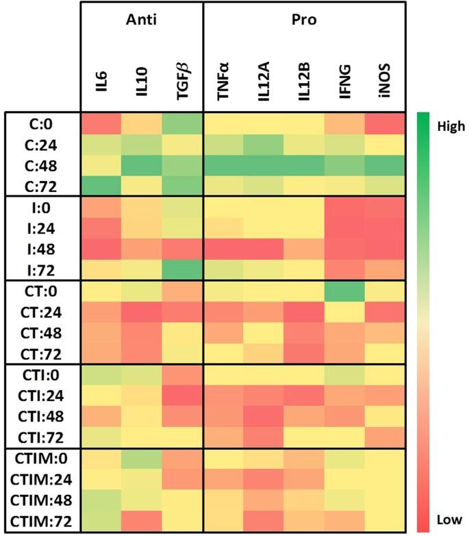 Transcription Factor Target Gene Network governs the Logical