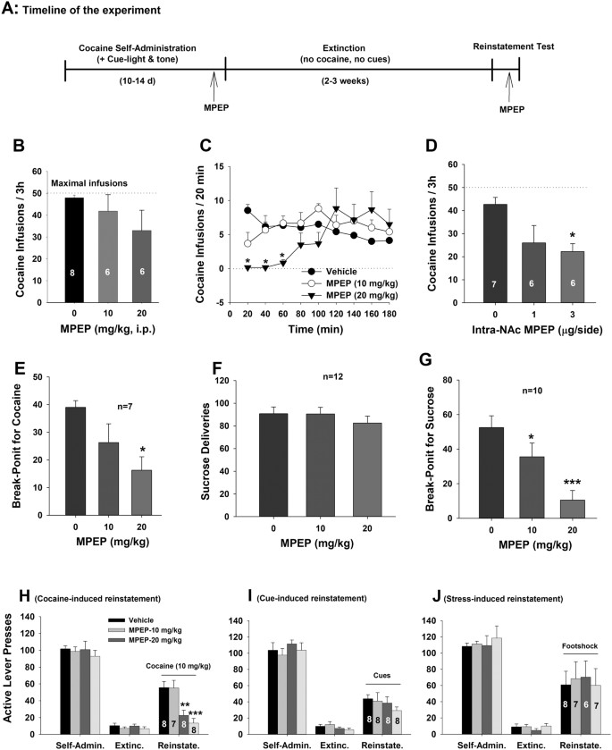 mGluR5 antagonism inhibits cocaine reinforcement and relapse