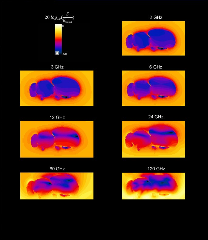 Exposure of Insects to Radio-Frequency Electromagnetic