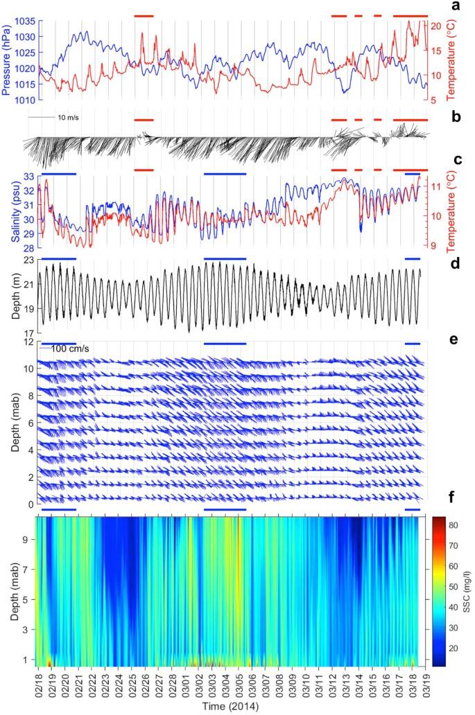 A comprehensive sediment dynamics study of a major mud belt