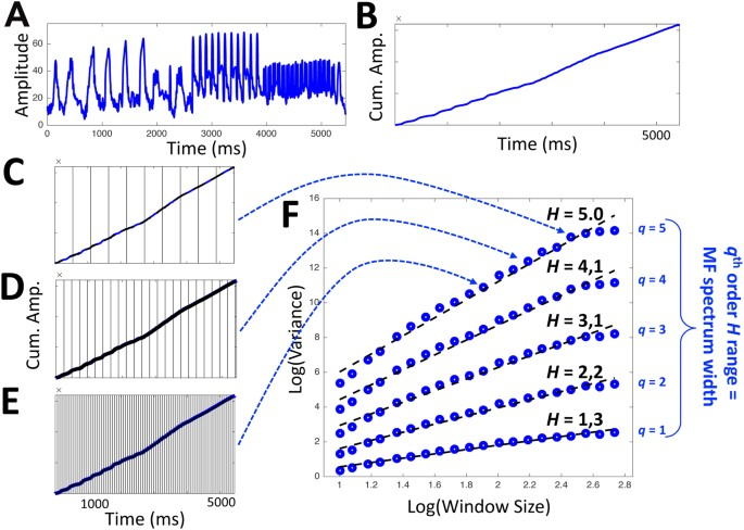 Multifractal analysis reveals music-like dynamic structure