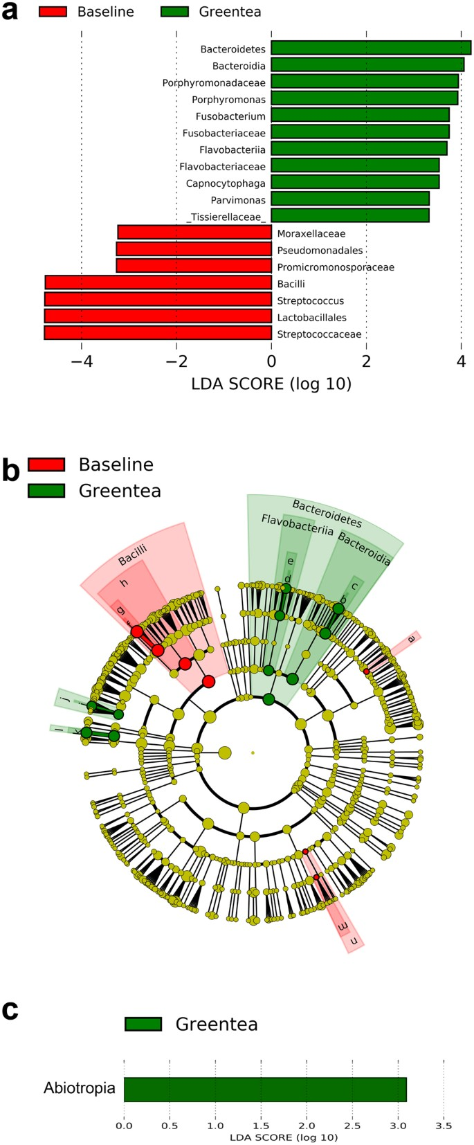Effects Of Green Tea On Mirna And Microbiome Of Oral Epithelium Scientific Reports