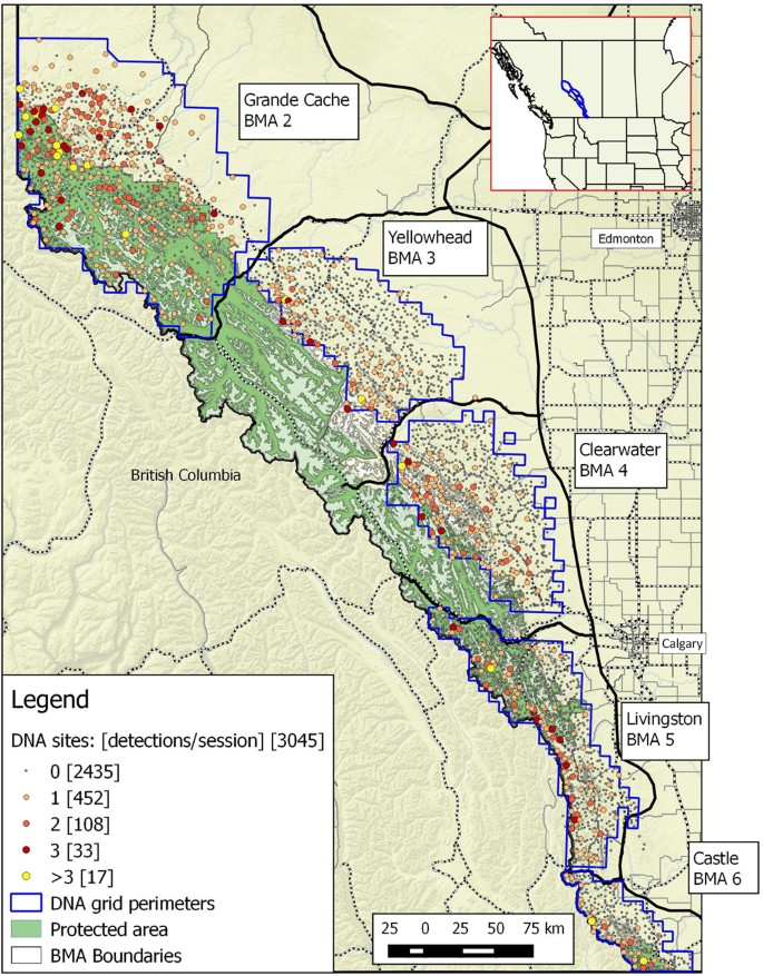 Using spatial mark-recapture for conservation monitoring of