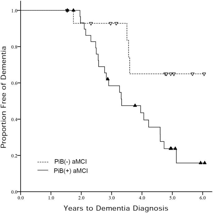 Longitudinal outcomes of amyloid positive versus negative amnestic