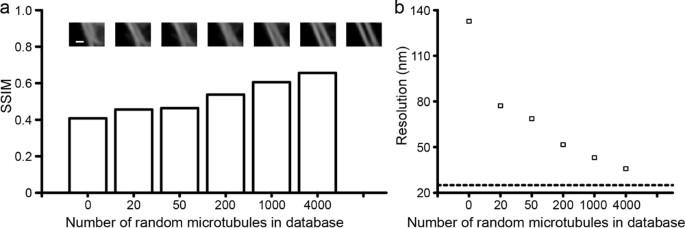 Example-Based Super-Resolution Fluorescence Microscopy