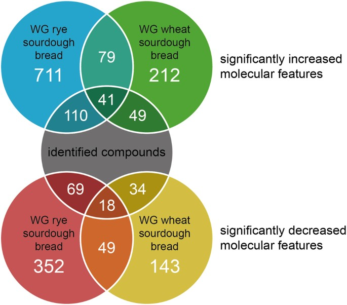 Metabolic profiling of sourdough fermented wheat and rye