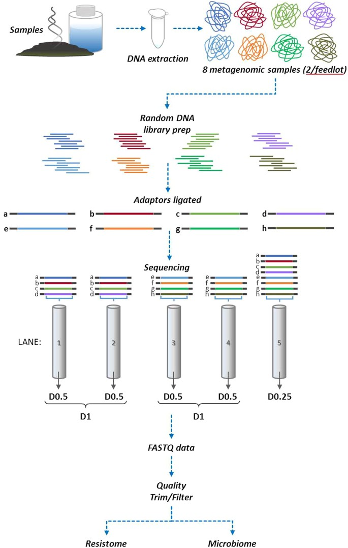 Impact of sequencing depth on the characterization of the