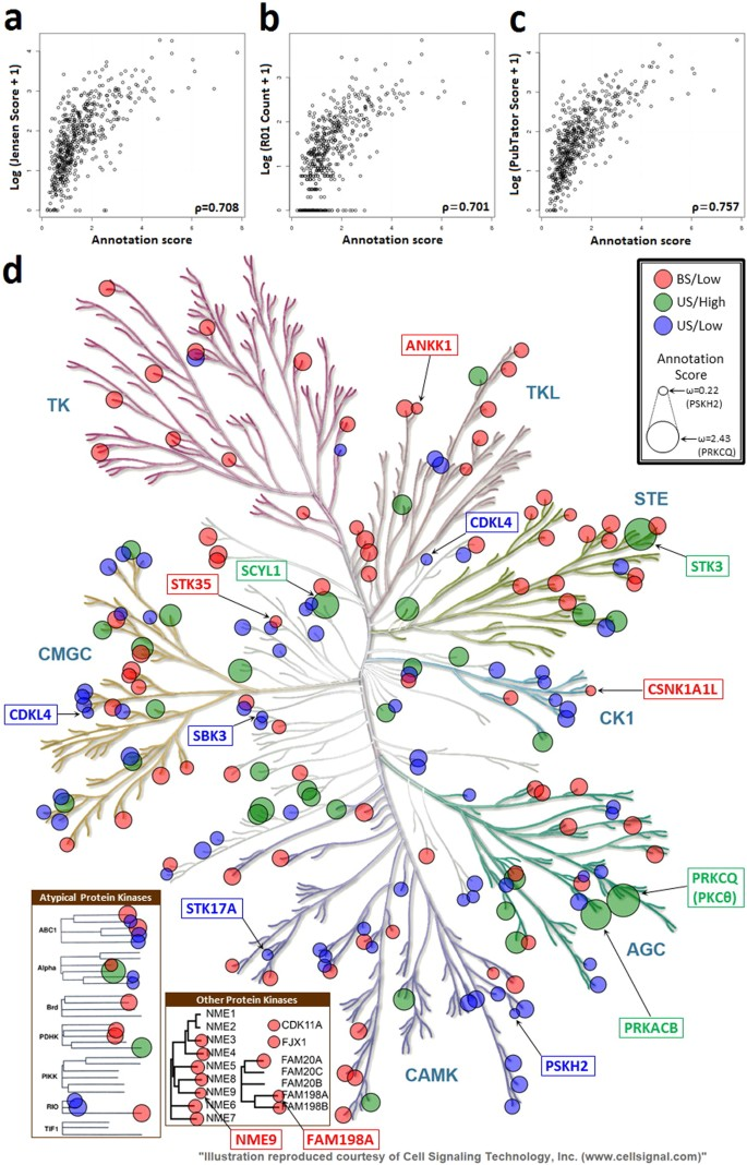 Integrative annotation and knowledge discovery of kinase