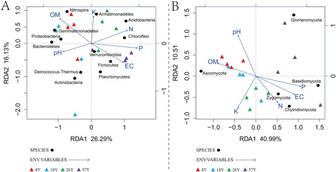 Long-Term Coffee Monoculture Alters Soil Chemical Properties and