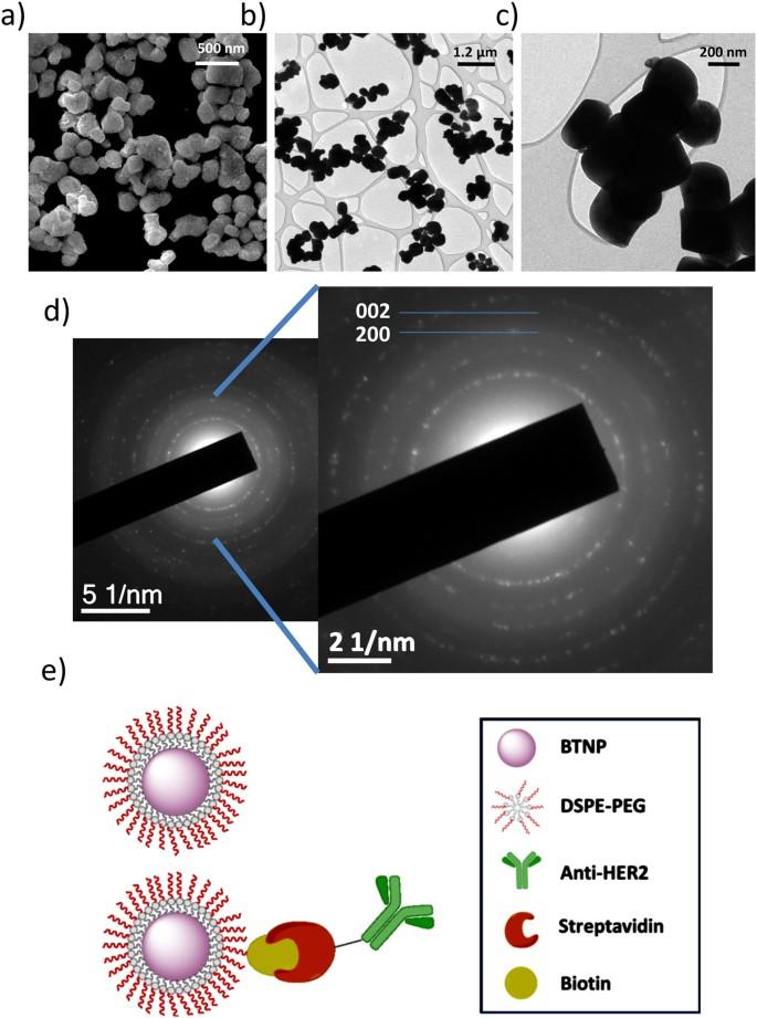 Ultrasound-Activated Piezoelectric Nanoparticles Inhibit