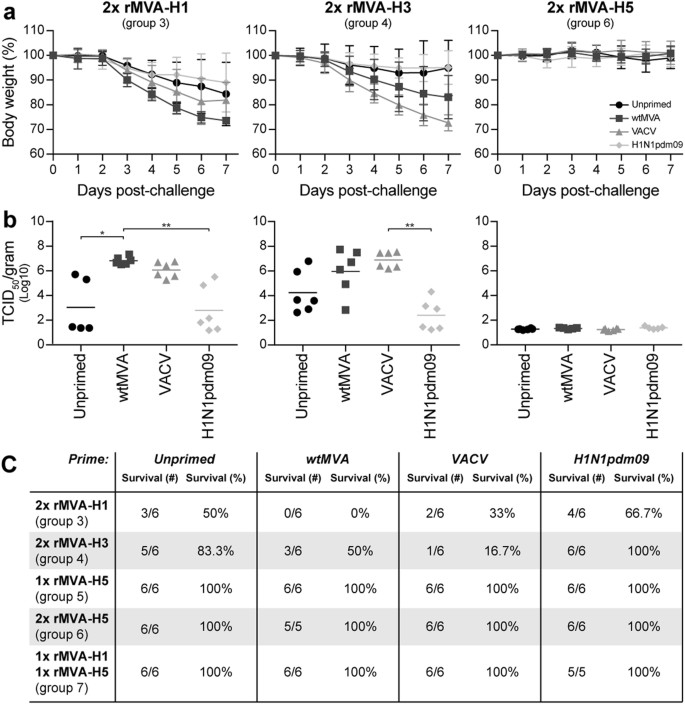 Effects of pre-existing orthopoxvirus-specific immunity on