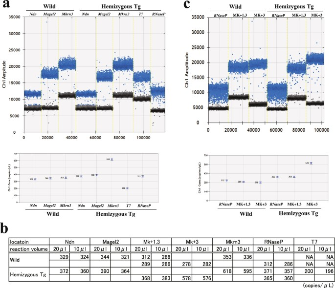 Application of droplet digital PCR in the analysis of genome