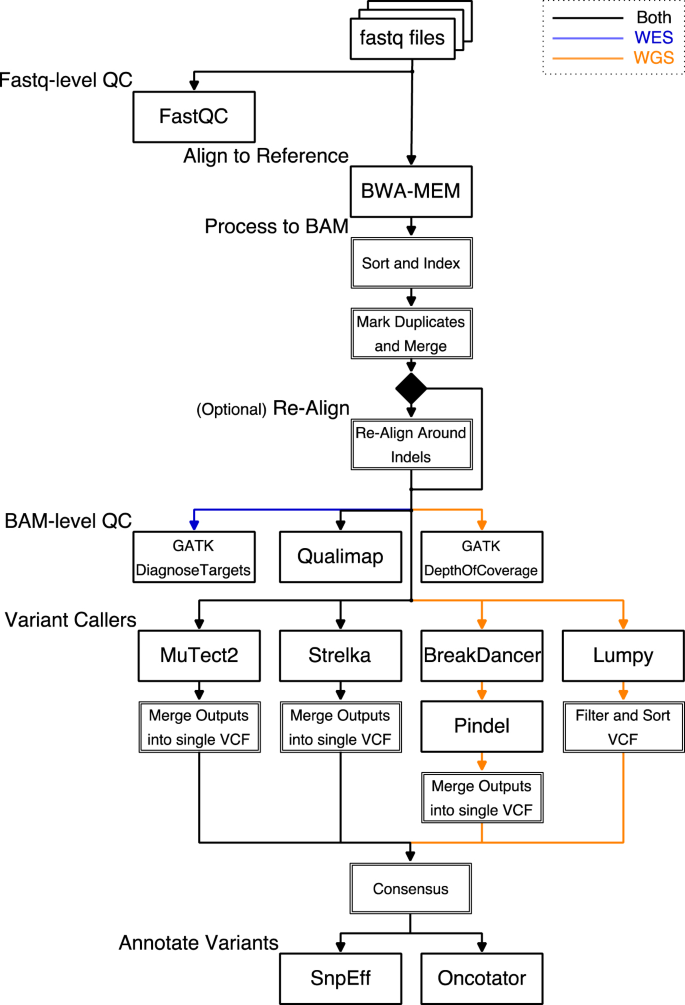 DNAp: A Pipeline for DNA-seq Data Analysis | Scientific Reports