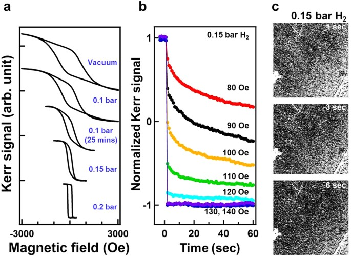 Hydrogen-mediated magnetic domain formation and domain wall
